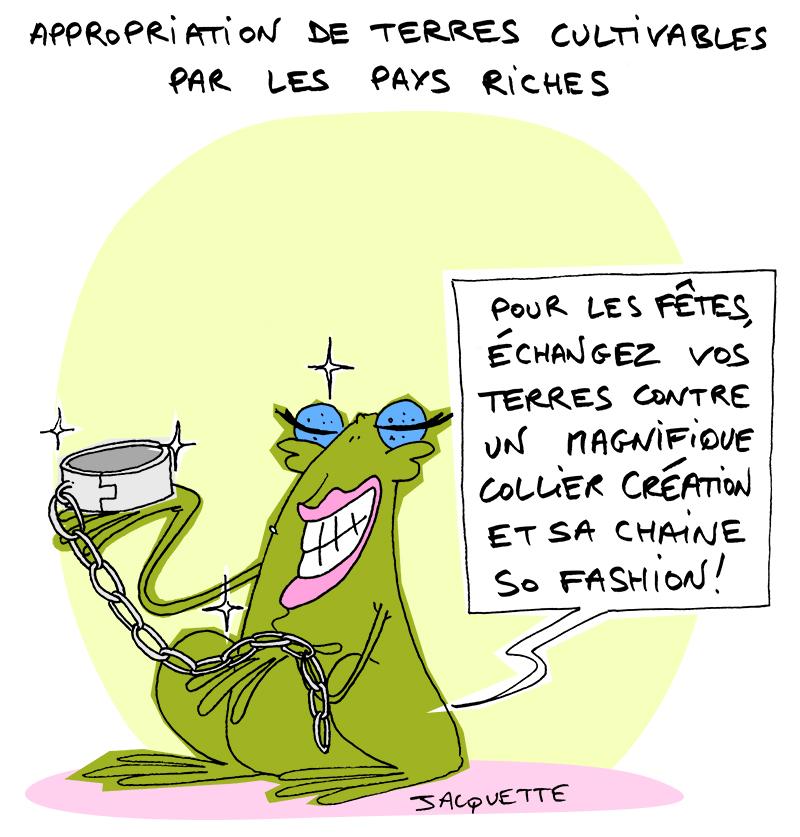 le crapaud - nicolas jacquette - Robert Fiess - appropriation terres des pauvres par pays riches - turbocolonialisme