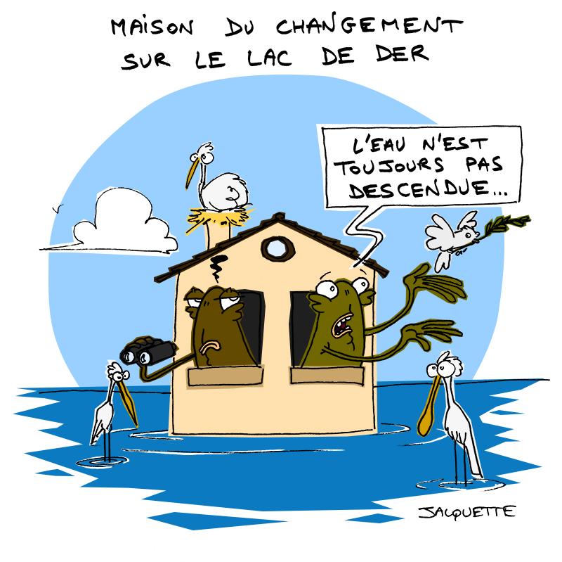 le Crapaud - nicolas Jacquette - robert Fiess - maison du changement sur le lac de der