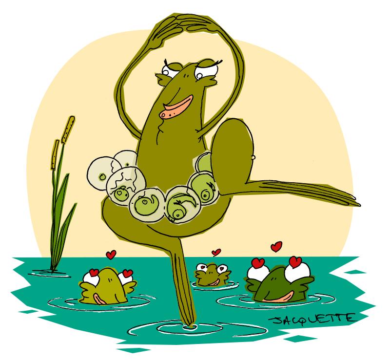 le crapaud - nicolas jacquette - robert Fiess - grenouilles frénésie amoureuse