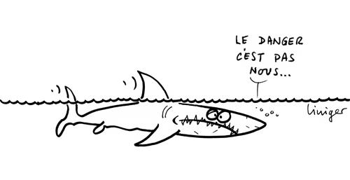 Le crapaud - Jérôme Liniger - Requins en détresse