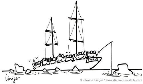 Le crapaud - Jérôme Liniger - Le bateau scientifique Tara mission en étau dans les glaces arctiques