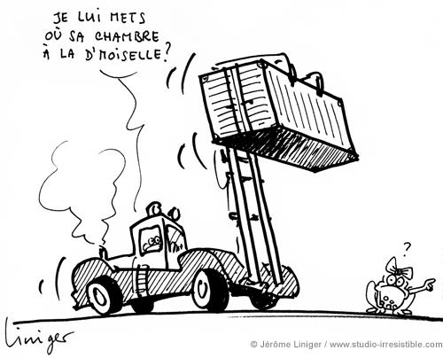 Le crapaud - Jérôme Liniger - Conteneurs pour logements étudiants