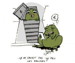 Le crapaud - Nicolas Jacquette - cercueils en carton