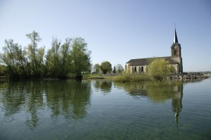 Le crapaud - A Der, une autre maison sur le lac