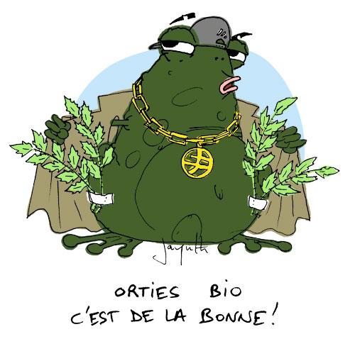 Le crapaud - Nicolas Jacquette - La guerre de l'ortie… n'aura pas lieu