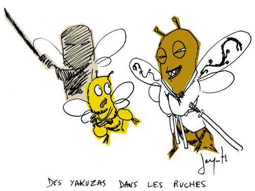 Le crapaud - Nicolas Jacquette - Abeilles en danger, frelon japonais