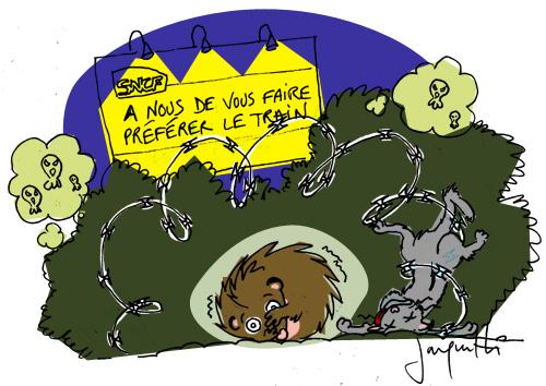 Le crapaud - Nicolas Jacquette - les hérissons parisiens décimés par la SNCF