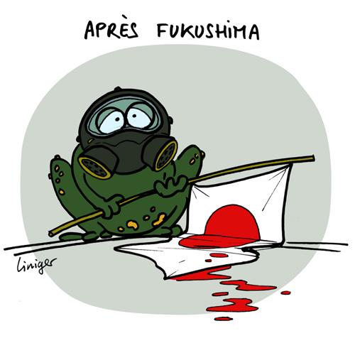 Le crapaud - Jérôme Liniger - après Fukushima, le quotidien des japonais
