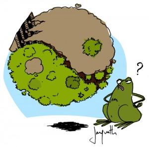 Le crapaud - Nicolas Jacquette - les arbres vendent leur atout carbone