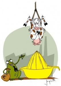 Le crapaud - Nicolas Jacquette - ferme à lait intensive au plateau des mille vaches