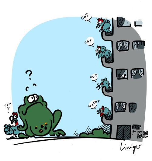 Le Crapaud - Jérôme Liniger - les poules arrivent dans les villes - 2012