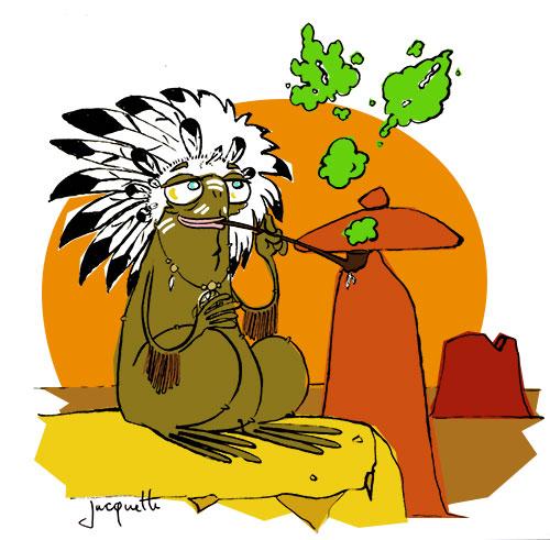 Le crapaud - nicolas jacquette - livre Robert Fiess - indiens