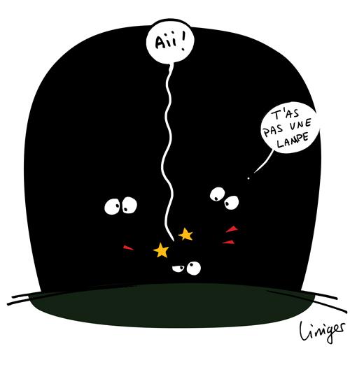 le crapaud - jérôme liniger - robert fiess - triangle noir - villages sans lumières