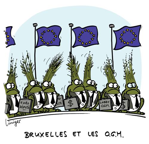 Le crapaud - Jérôme Liniger - Robert Fiess - Bruxelles et les OGM