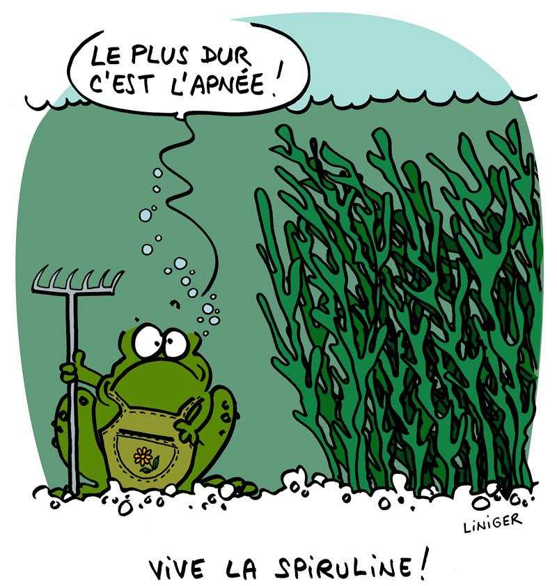 Le Crapaud - Robert Fiess et Jérôme Liniger - Vive la spiruline