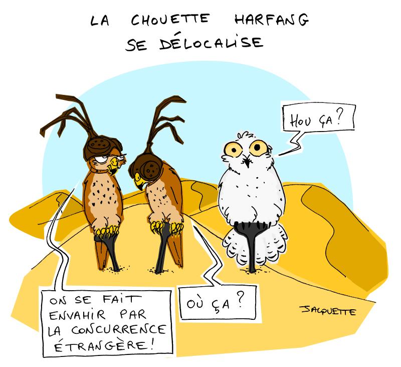 le-Crapaud_Jacquette-Fiess_chouette-harfang-délocalise-web