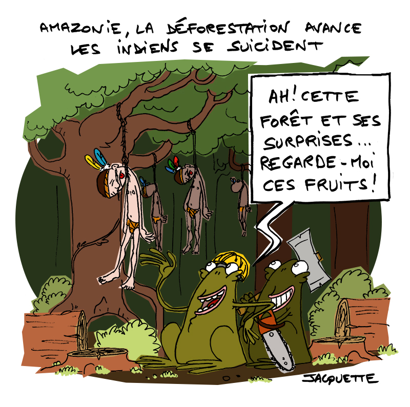 le-crapaud-jacquette-fiess-hamazonie-déforestation-suicides-indiens-web