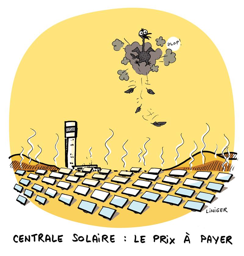 LeCrapaud.fr - Centrale Solaire Liniger et Fiess