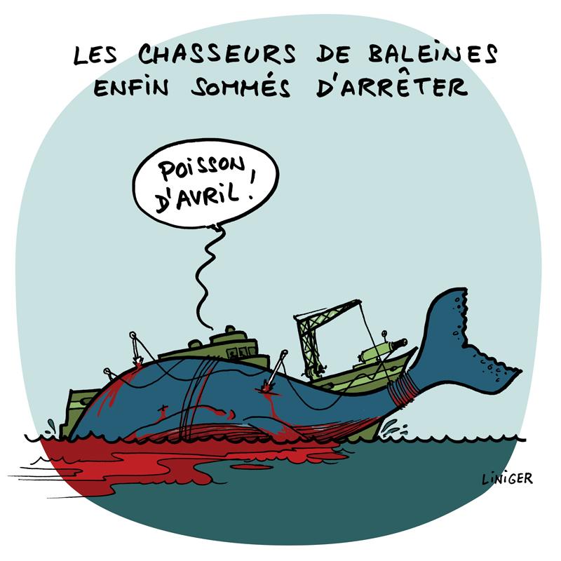 LeCrapaud.fr par Fiess & Liniger :  La fin de la chasse à la baleine