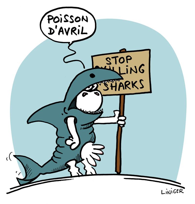 Le Crapaud - Fiess et Liniger _ sauvez les requins