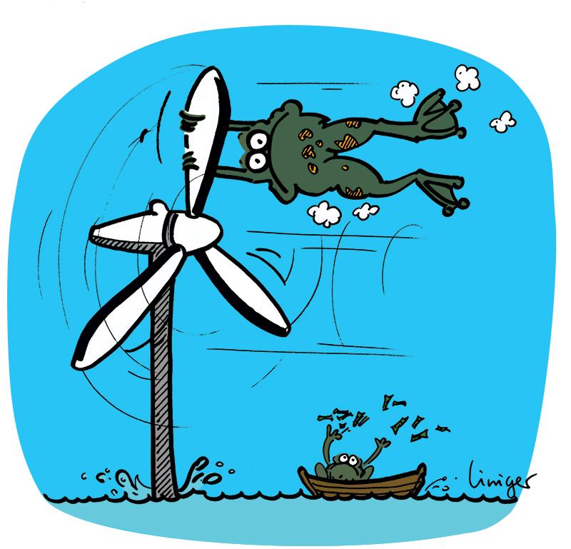 Lecrapaud - Robert Fiess - Jérôme Liniger - Allemagne, plein vent sur l'éolienne au large