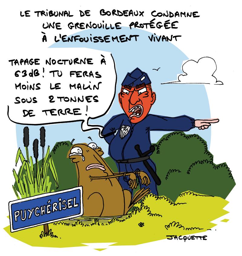 le crapaud - robert fiess - nicolas jacquette - une grenouille protégée condamnée à l'enfouissement par le tribulal de Bordeaux - couple pechenas - commune de puychérisel - fête des voisins