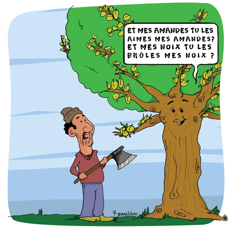 le crapaud - cop22 - bennabbou abdellah - hammams ecologique